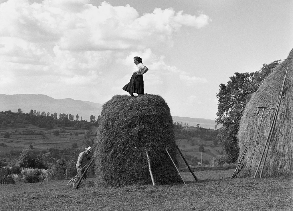 Making a Haystack, Sarbi, Maramures